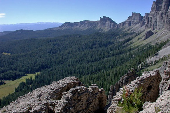 Shoshone-National-Forest1
